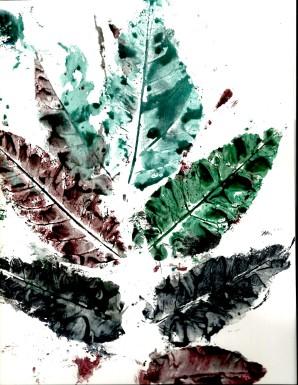 leaves 27
